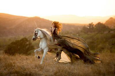 Lauren Maeve Photography