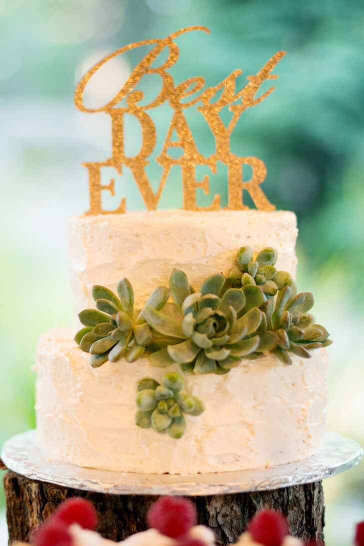 White Buttercream Cake With Succulent