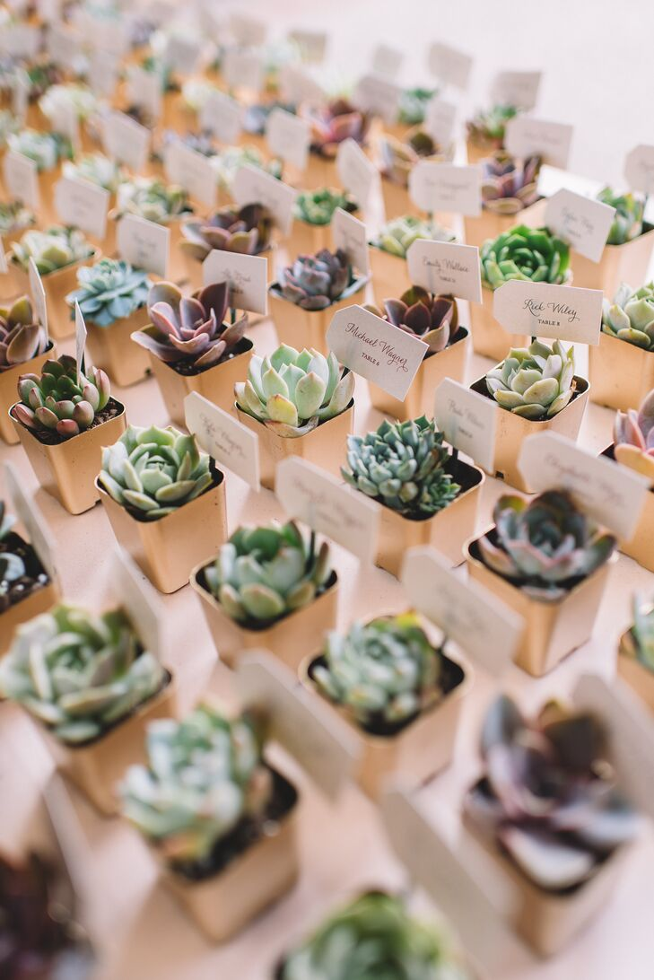 "Each guest received a three-inch succulent as a place card and a favor. Flat escort cards, custom-printed with each person's name and table number in different ink colors (corresponding with their meal choice) were ordered from Etsy, then adhered to tiny green sticks and stuck in the soil. Connie spray-painted the containers gold, unpacked 280 bare root succulents, then repotted them all a week before the wedding to avoid watermarks on the containers. Kent and Connie planted and replanted the succulents a few times. ""I knew this would be a lot of work but didn't realize just how much work,"" she says."