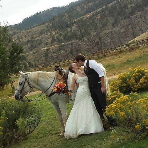 Sylvan Dale Guest Ranch Loveland Co