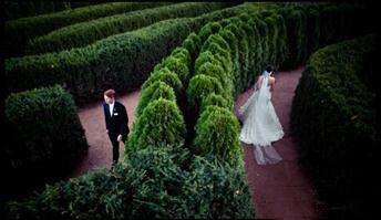 Fig Weddings