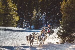 Good Times Adventures Wedding Dogsledding