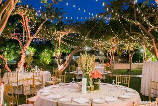 Moonlight Memories Wedding & Event Coordination