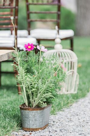 Potted Wildflower Aisle Arrangements