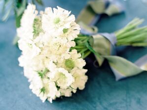 White Scabiosa Bouquet with Ribbon