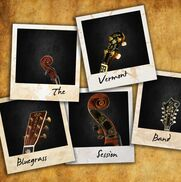 Burlington, VT Bluegrass Band | The Vermont Bluegrass Session Band