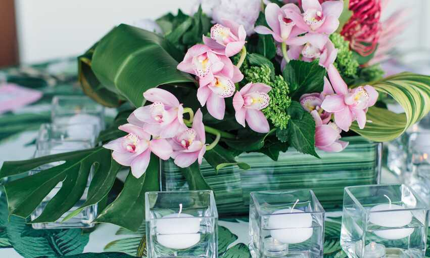 Tropical party themed inspiration and ideas