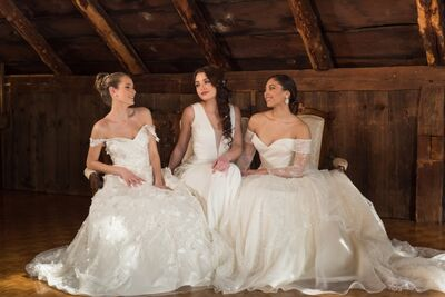 Wedding Dress In Ct.Bridal Salons In Fairfield Ct The Knot