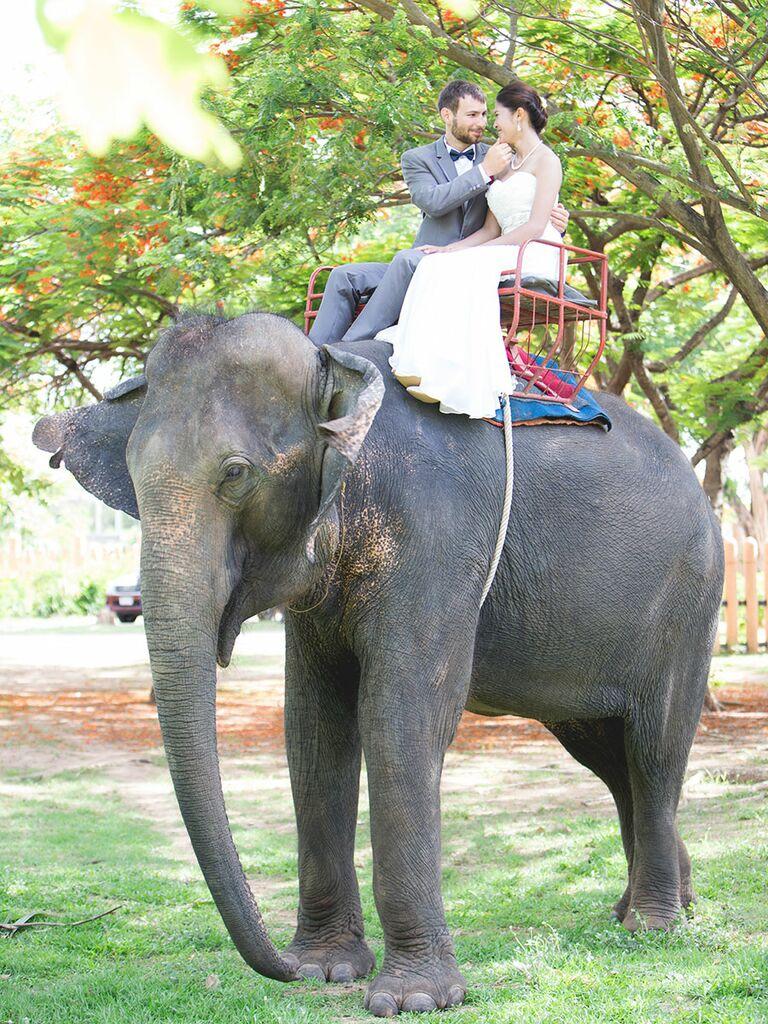 Newly weds on an Elephant