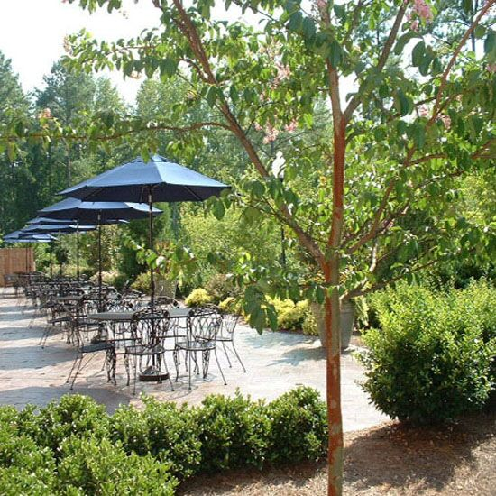 Party Halls In Cary Nc: Reception Venues - Cary, NC