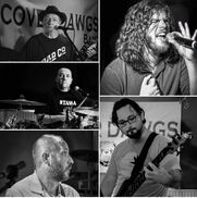 Philadelphia, PA Cover Band | TheCoverDawgsBand