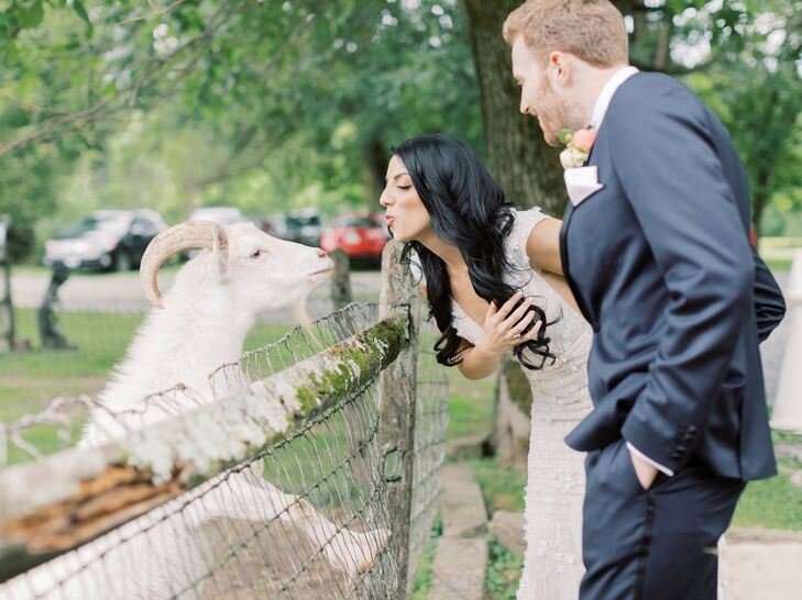 Couple Greets Farm Animals at Pennsylvania Wedding