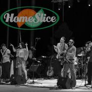 Denver, CO Dance Band | HomeSlice