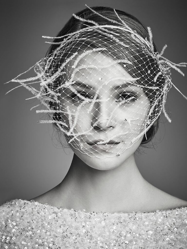 The Birdcage Veil