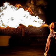 Stuart, FL Fire Dancer | Spread The Flow