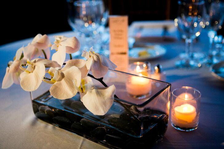 Modern White Orchid Centerpiece