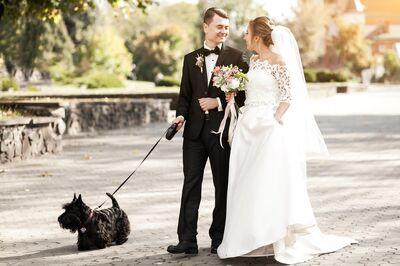 FLX Wedding Officiant