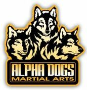 Jacksonville, FL Motivational Speaker | Alpha Dogs Martial Arts