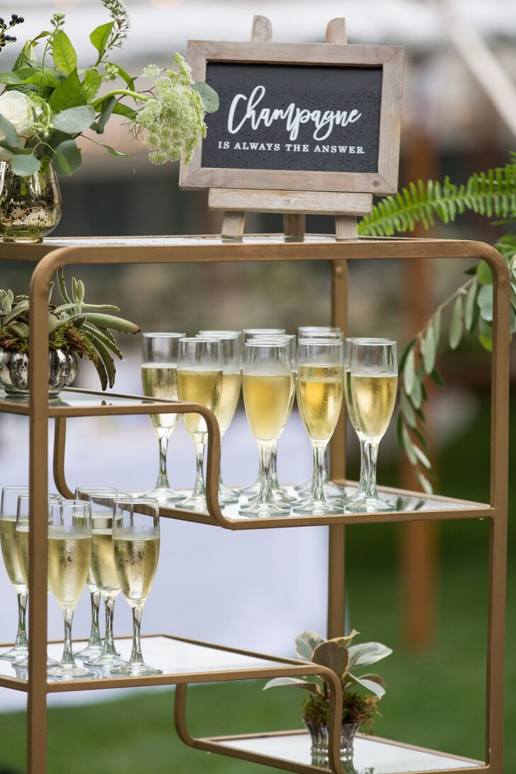 Champagne Display Shelf Decorated with Plants