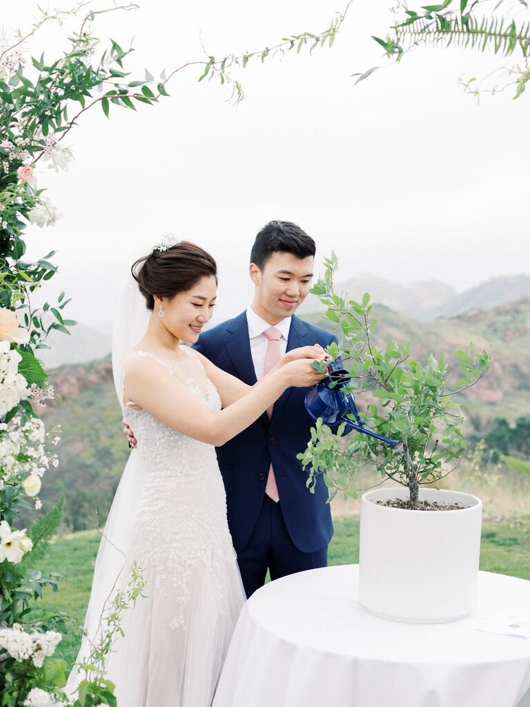 Couple watering tree during wedding ceremony