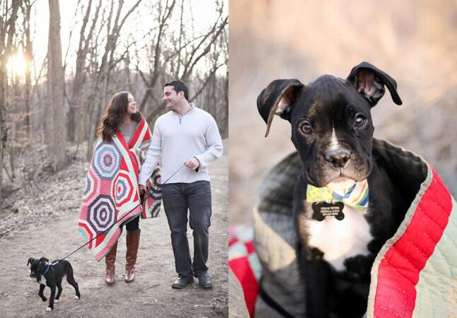 Engaged couple with puppy