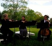 Great Barrington, MA String Quartet | The Rosamund Trio/ Ensemble