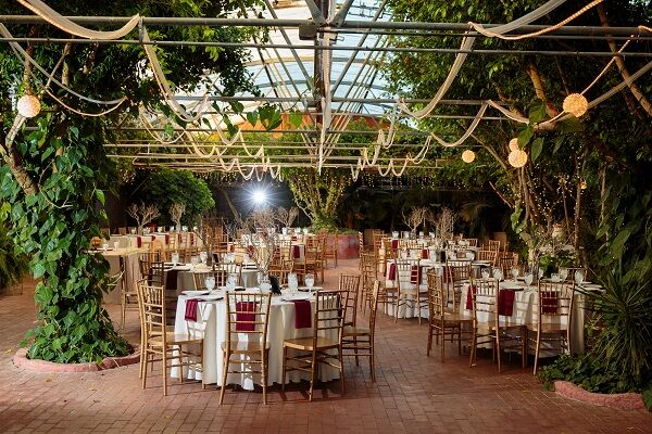 Boojum Tree Hidden Gardens Reception Venues Phoenix Az