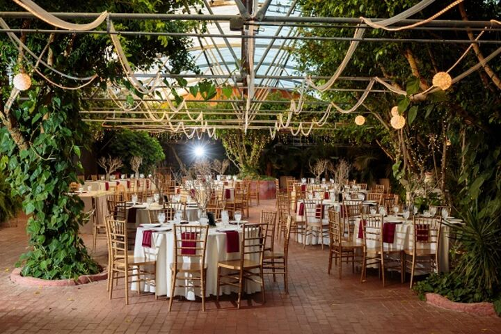 Boojum tree hidden gardens phoenix az for Wedding reception location ideas