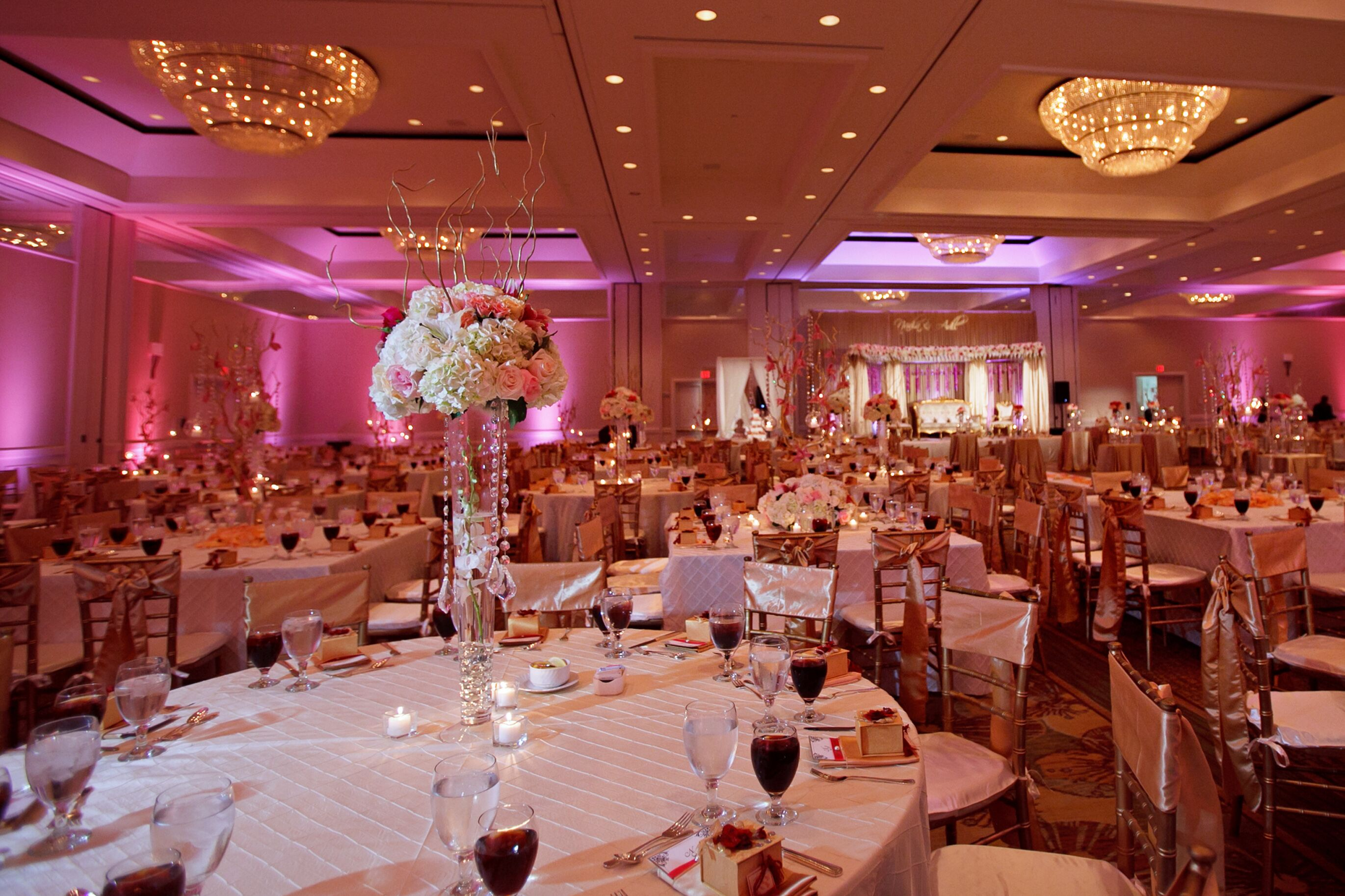 Wedding reception venues in tampa fl the knot grand hyatt tampa bay junglespirit Image collections