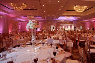 Wedding venues in safety harbor fl the knot grand hyatt tampa bay junglespirit Gallery