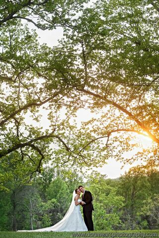 Castle hill cidery wedding bands