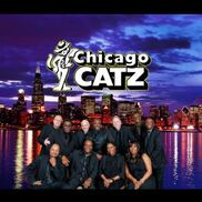 Chicago, IL Dance Band | The Chicago Catz