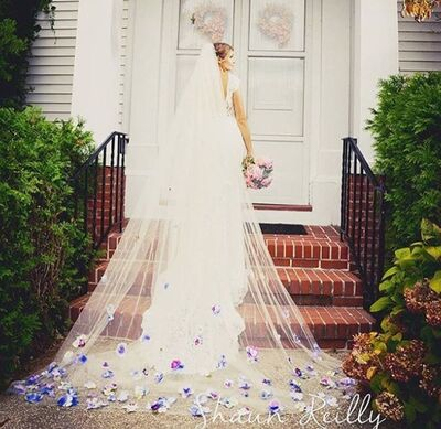 Crowning Moment Veils