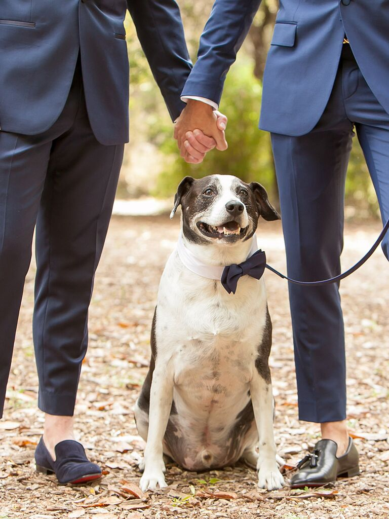 Couple pose idea for wedding day pictures holding hands
