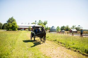 Horse and Carriage Entrance for Bride and Father