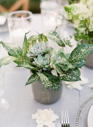 Eco-Friendly Succulent Centerpieces