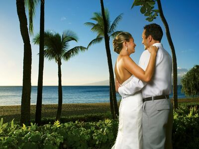 Enchanted Honeymoons