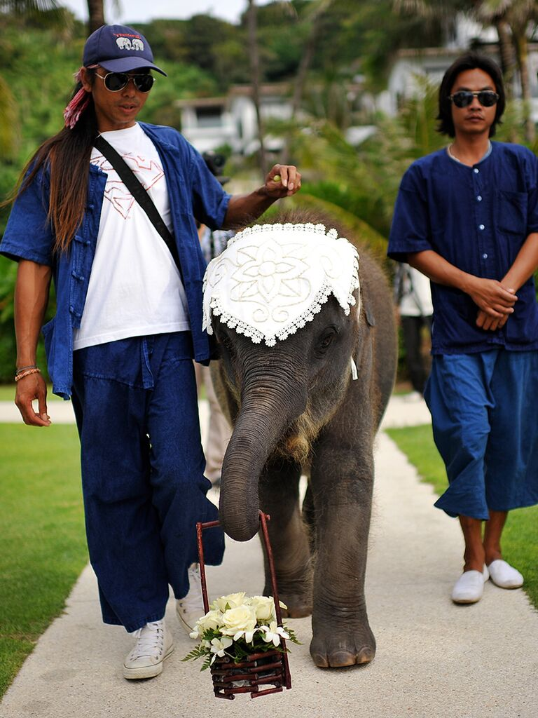 Unique wedding ceremony idea with an elephant ring bearer