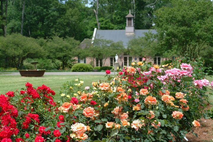 Lsu Agcenter Botanic Gardens Baton Rouge La