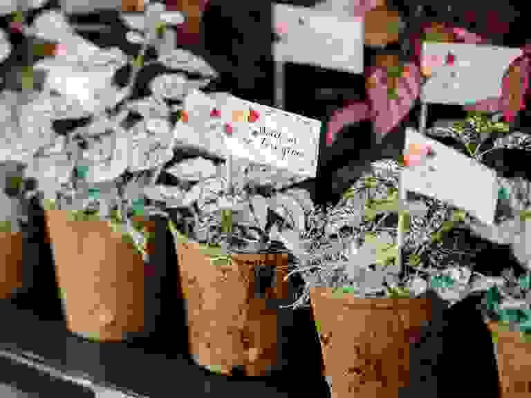 Flower pots for floral wedding favors