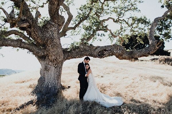 Other Wedding Videographers Like Mclane Video Productions