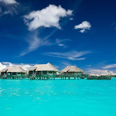 Hollie Birckhead - Dream Vacations