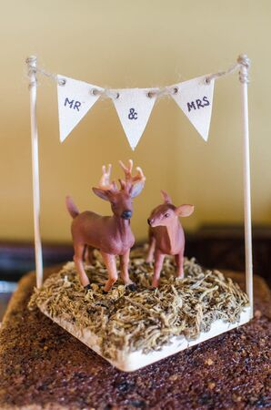 Rustic Natural Deer and Pennant Cake Topper