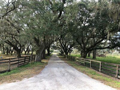 Sunshine Lane Ranch