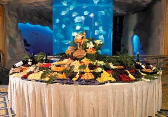 Downtown Aquarium Denver Denver Co