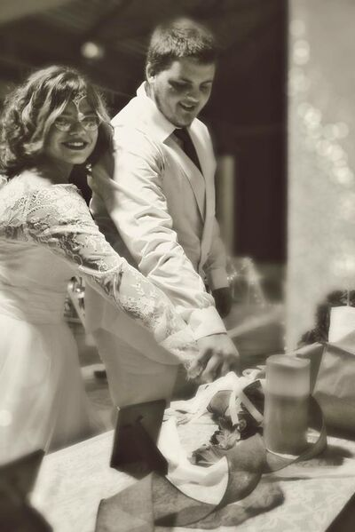 To The Moon And Back Wedding Services