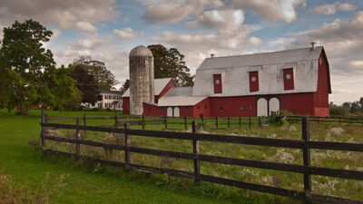 Osmica at Spring Trail Farm