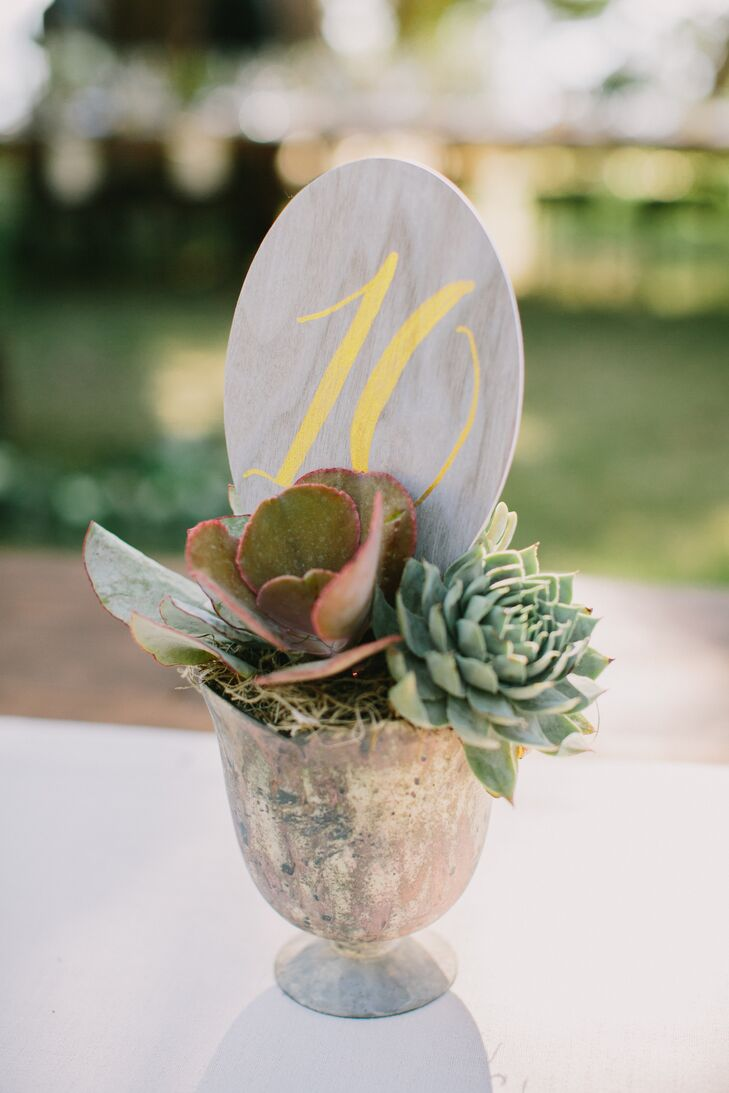 Succulents in brass and gold containers served as centerpieces and table number holders.