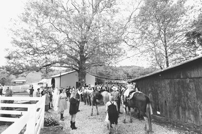 Neltner's Farm & Event Venue