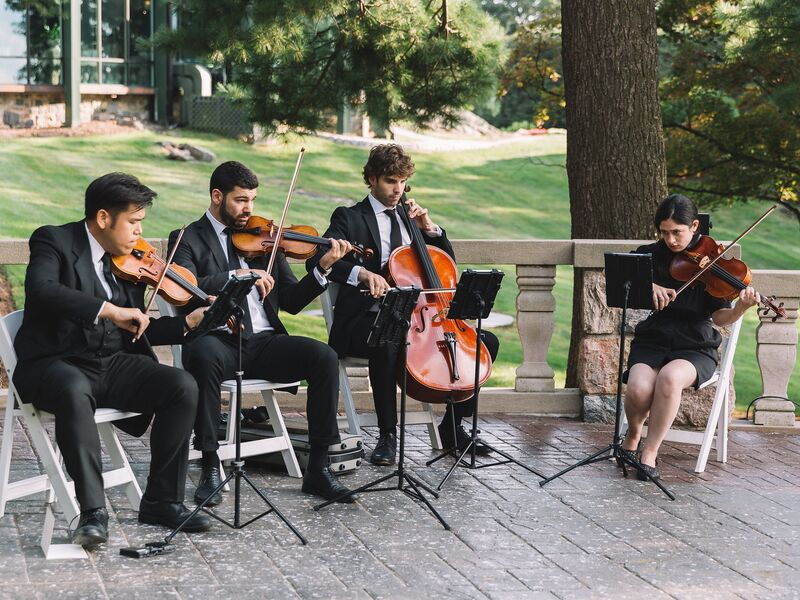 Highline String Quartet - String Quartet - New York City, NY